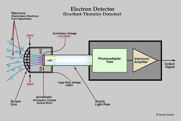 1-Secondary-Electron-Detector1