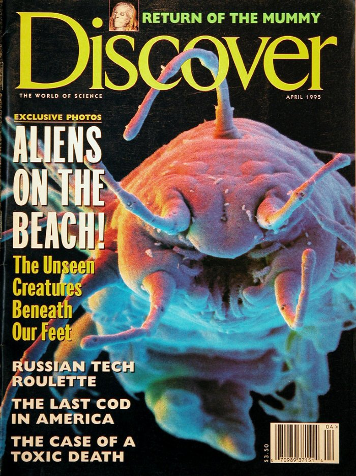 Discover-4-199512