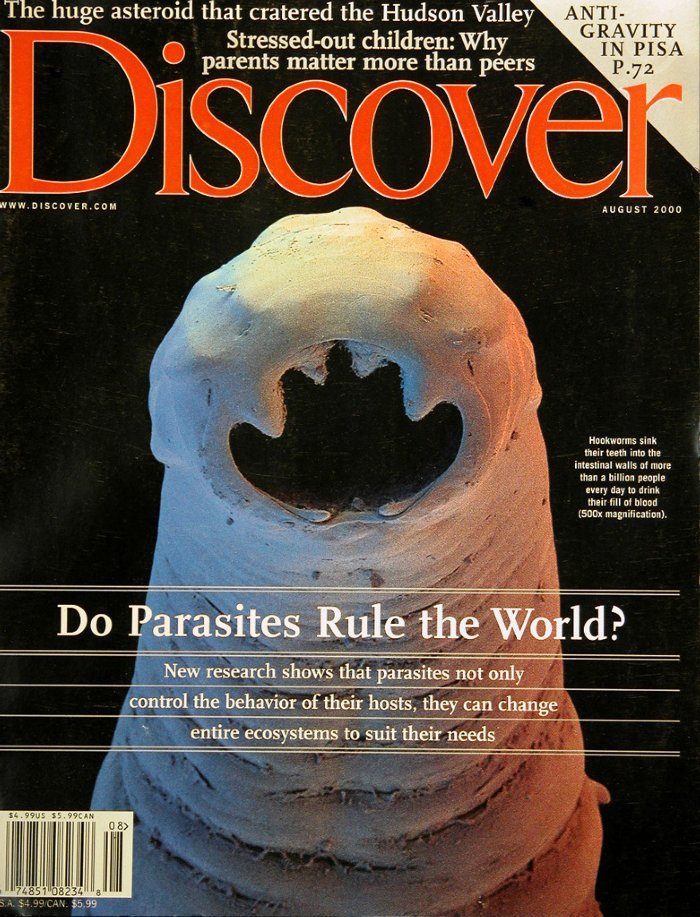 Discover-8-200012
